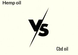 I prefer hemp oil vs cbd oil,which is better?