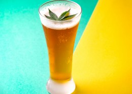 How to make beer with hemp seeds?