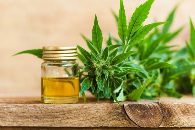 Can CBD Hemp Oil Really Help You to Sleep Better?