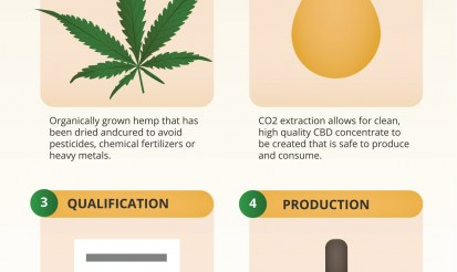 How to make your own cbd oil?