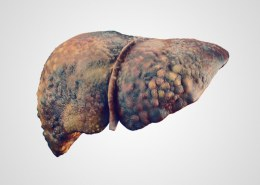 Will using CBD oil cause liver damage?