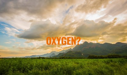 How much oxygen does hemp produce?