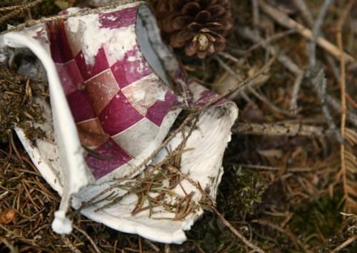 How long does it take for hemp paper to decompose?