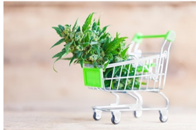 Shopping Cart with Smokable Hemp Plant