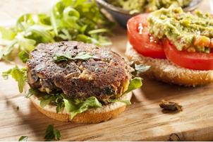 Hemp herb and mushroom burger 