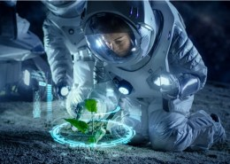 Can hemp grow in space?