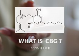 What is cbg oil and its benefits?
