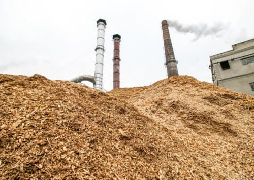 How much biomass does a hemp plant produce?