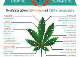 What is the difference between hemp oil and cbd oil?