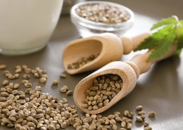 What is a easy hemp seed recipe?
