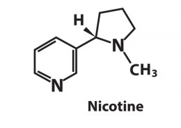 Is there nicotine in hemp cigarettes?