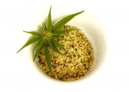Are hemp leaves edible?
