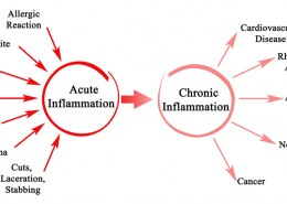 How can hemp oil help with inflammation?