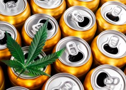 Can you infuse hemp with soda?
