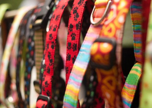 Where can I get Hemp pet collars from?