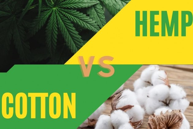 Hemp vs. Cotton: Why Hemp is way Better Than Cotton
