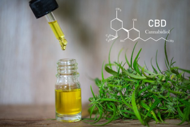 CBD Oil, What Is It?