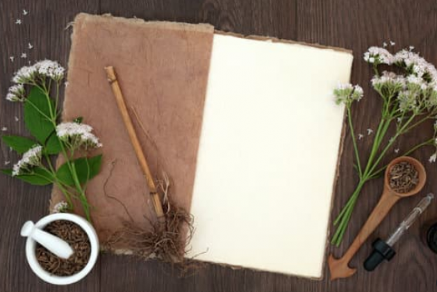 Why Hemp Paper is Far Superior to Conventional Paper